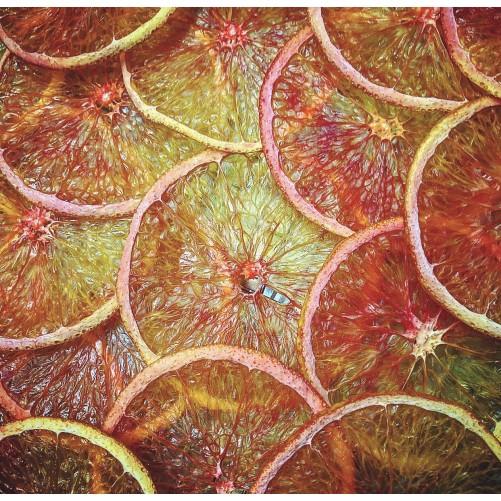 Tranches d'oranges déshydratées SUNSET Labtenders